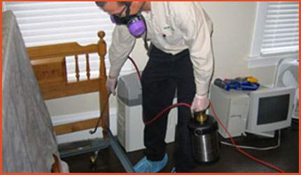 Bedbug-Control-Extermination
